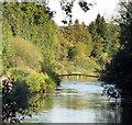 SU4648 : River Test near Town Mill by Des Blenkinsopp