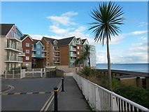 SZ1191 : Boscombe: footpath F08 passes Honeycombe Beach by Chris Downer
