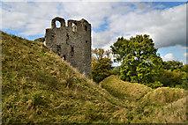 SO2980 : Clun castle by Philip Pankhurst