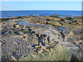NJ1469 : Soft Sediment Deformation by Anne Burgess
