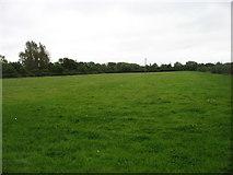 SU1795 : Farmland near Bridge Farm by David Purchase
