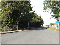 TM0691 : Abbey Road, Old Buckenham by Adrian Cable