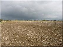SU1294 : Farmland near Water Eaton, east of Cricklade by David Purchase