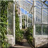 J6268 : Glasshouses, Ballywalter Park by Rossographer
