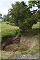 TQ6039 : Chalybeate Spring, Dunorlan Park by N Chadwick