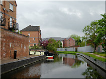 SO8276 : Staffordshire and Worcestershire Canal in Kidderminster, Worcestershire by Roger  Kidd