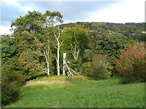 SE0927 : Trees seen from Halifax FP399, Northowram by Humphrey Bolton