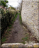 SO8700 : Public footpath between walls, Minchinhampton by Jaggery