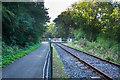 SX5158 : Drake's Trail by Guy Wareham