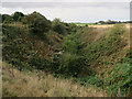 TG2937 : Old railway cutting by Hugh Venables