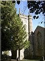 ST6456 : Holy Trinity, Paulton by Neil Owen