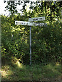 TM1591 : Signpost on Low Common Road by Adrian Cable