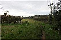 SU9395 : Chiltern Way between Winchmore Hill and Coleshill by Robert Eva