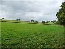 NY6720 : Farmland west of Dowpits Hill by Christine Johnstone