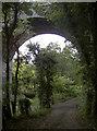 ST7660 : Path under the bridge by Neil Owen