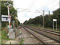 TM1587 : Railway Lines at Hales Street Level Crossing by Adrian Cable
