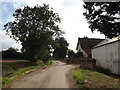 TM1587 : Hales Street & footpath by Adrian Cable