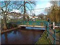 SX9676 : Bridge over Dawlish Water, Dawlish by Malc McDonald