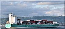 "J3778 : The ""Christopher"", Belfast Lough (October 2016) by Albert Bridge"