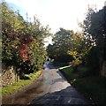 SP7433 : Chapel Lane, Thornborough by Dave Thompson