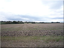 TM4883 : Field, Wrentham by JThomas