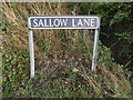 TM1791 : Shallow Lane sign by Adrian Cable