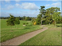 SO8845 : Recently planted trees, Croome Park by Philip Halling