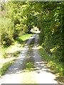 SN0104 : Track to Upton Farm by Gordon Hatton