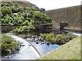 SN9264 : Below the Caban Coch Dam, Elan Valley by Derek Voller