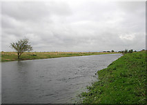 TL4279 : Sutton Gault: the New Bedford River by John Sutton