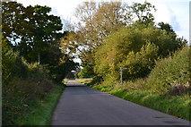 SU1882 : Day House Lane by David Martin