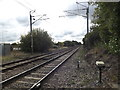 TM1587 : Railway Lines at Tivetshall Crossing by Adrian Cable