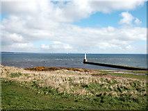 NJ9605 : South breakwater, Aberdeen harbour by Bill Harrison