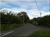 TM1093 : Hall Road, Carleton Rode by Adrian Cable