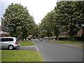 TF1901 : Chestnut Avenue, Dogsthorpe (2) by Richard Vince