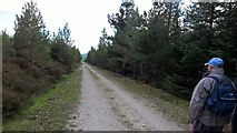 SE6091 : Track through East Moor Wood by Chris Morgan