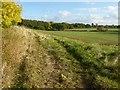 SO7944 : Headland farm track by Philip Halling