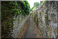 ST7366 : Narrow passage above Mountain Ash by Bill Boaden