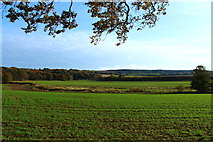 NS2209 : Farmland at Barwhin by Billy McCrorie