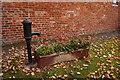 SE9655 : Village Pump, Main Street, Tibthorpe by Ian S