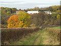 NZ3356 : Autumn colours on Wearside by Malc McDonald