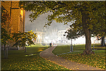 SX9292 : Exeter : Cathedral Green by Lewis Clarke