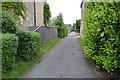 TL4463 : School Lane by N Chadwick