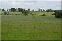 TQ5244 : Farmland, Penshurst Estate by N Chadwick