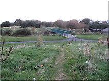 J3731 : The Tullybranigan River footbridge in Islands Park, Newcastle by Eric Jones