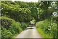 SS2300 : Lane to Kitsham by Derek Harper