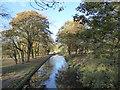 SJ8846 : Hanley Park: Caldon Canal by Jonathan Hutchins