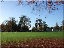 SJ7886 : College sports field, Hale by JThomas