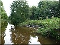 SJ3629 : Overflow weir, near Perry Aqueduct, Montgomery Canal by Christine Johnstone