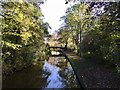 SJ8846 : Hanley Park: Caldon Canal and footbridge by Jonathan Hutchins